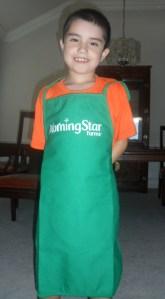 An apron