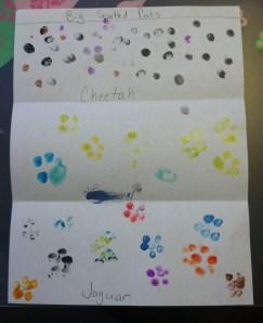 JT cheetah spots1