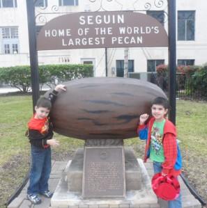 The original pecan