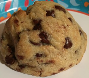 We also brought home chocolate chip cookies. These were big, soft, chocolate chip cookies. JT loved them.